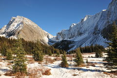 Winter mountains and meadows Royalty Free Stock Image