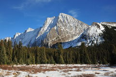 Winter mountains and meadows stock photo