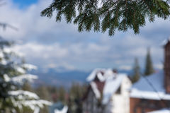 Winter mountains near cottages between snow-covered fir-trees, f Royalty Free Stock Images