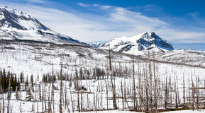 Winter Mountains of Northern Montana and Canadian Border Royalty Free Stock Image