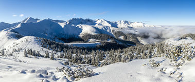Winter in the mountains - panorama of Western Tatras. Stock Image