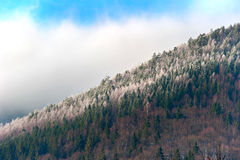 Winter mountains slope Royalty Free Stock Photography