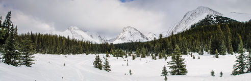 Winter in the mountains Stock Photography