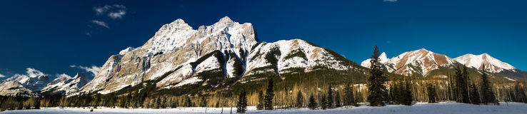 Winter in the mountains Royalty Free Stock Photo