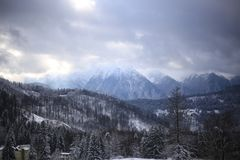 Winter in the Mountains. The special spirit of the winter holidays inspired me to take this picture that shows how amazing is the nature. Happy New Year`s Eve Royalty Free Stock Images
