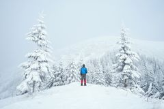 Winter trekking in the mountains Stock Images