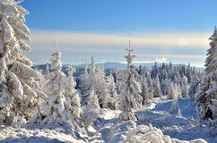 Winter mountains view. View on mountains in winter time royalty free stock image
