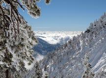 Winter Mt.-Baldy Kalifornien Stockbild