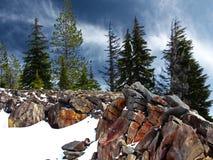 Winter at Mt. Hood Royalty Free Stock Photo