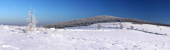 Winter - mt. Lysica Stockfoto