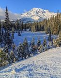 Winter in Mt. Rainier National Park Stock Photos