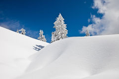 Winter on Mt Seymour Stock Photos