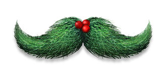 Winter Mustache Decoration. Winter mustache concept decoration made of pine needles and holly berries on a white background as a Christmas or new year symbol for Stock Photos