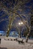 Winter, Nacht in einer Winterstadt, Winterstadt, Winter in einem Park, Schnee lizenzfreies stockbild