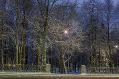 Winter, Nacht in einer Winterstadt, Winterstadt, Winter in einem Park, Schnee lizenzfreie stockfotos