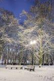 Winter, Nacht in einer Winterstadt, Winterstadt, Winter in einem Park, Schnee lizenzfreie stockfotografie