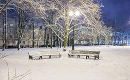 Winter, Nacht in einer Winterstadt, Winterstadt, Winter in einem Park, Schnee stockfotografie