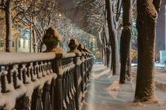 Winter, Nacht in einer Winterstadt, Winterstadt, Winter in einem Park, Schnee stockfotos