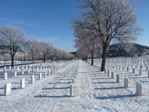 Winter at  the National Cemetery. Frosty trees in the winter at the National Cemetery Royalty Free Stock Images
