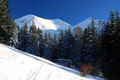 Winter in National Park of Rodnei Mountains royalty free stock photography