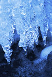 Winter natural background with icicles Royalty Free Stock Image