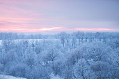 Winter natural landscape Royalty Free Stock Photo