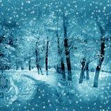 Winter nature Stock Photos