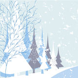 Winter nature background Stock Photo
