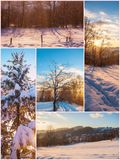 Winter nature beautiful collage images Stock Images