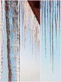 Winter nature beautiful collage images Royalty Free Stock Image