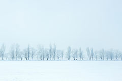 Winter nature beautiful landscape Royalty Free Stock Photo