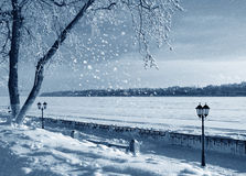 Winter nature, coast of river Stock Photo
