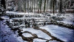 Winter nature Royalty Free Stock Photo