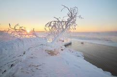 Winter nature landscape Stock Image