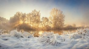 Winter nature landscape at sunrise. Frosty trees in morning sunlight. Christmas background. stock photos