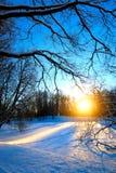 Winter Nature Landscape Stock Photo