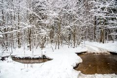 Winter nature in Lithuania stock photography