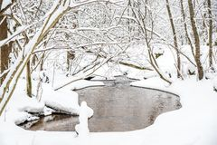 Winter nature in Lithuania royalty free stock image