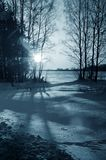 Winter nature, night forest Royalty Free Stock Photography