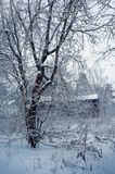 Winter nature, old house in forest Royalty Free Stock Image