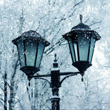 Winter nature, outdoor light and snow Royalty Free Stock Photography