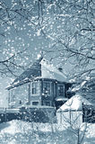 Winter nature Royalty Free Stock Image
