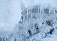 winter nature background, icicles in the snow royalty free stock image