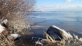 Winter near lake, Lithuania Royalty Free Stock Images