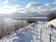 Winter near lake, Lithuania Royalty Free Stock Photo