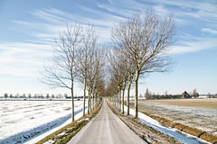 Winter in the Netherlands Royalty Free Stock Photography