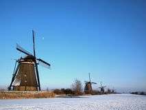 Winter in the Netherlands Royalty Free Stock Photo