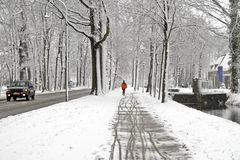 Winter in the Netherlands. Snowy woods in the Netherlands in winter Stock Photo