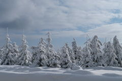 Winter, neues Jahr Lizenzfreie Stockfotografie