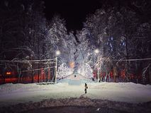 Winter New Year park, illuminated with garlands. A lonely girl is waiting for someone. stock image
